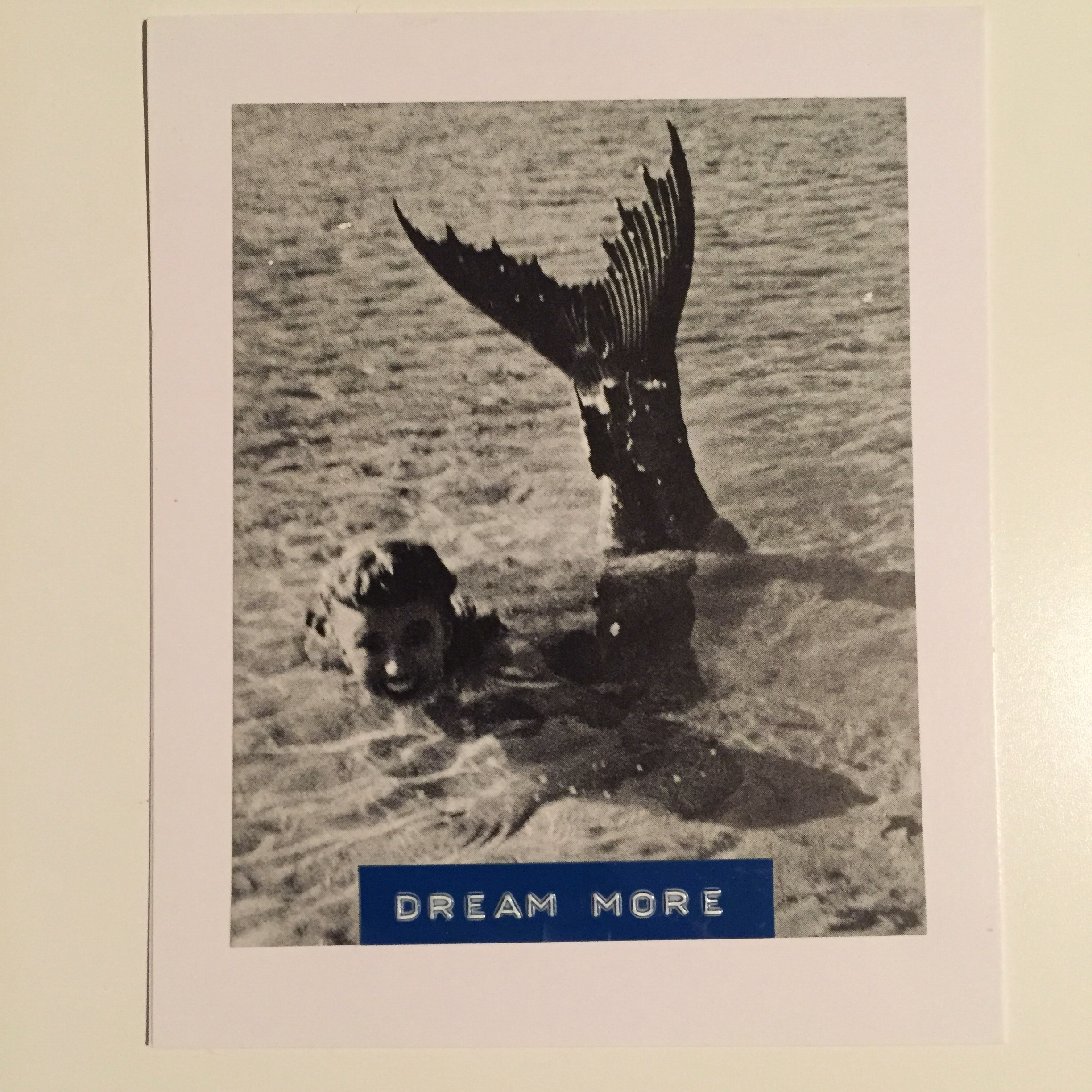 handmade card, dream more